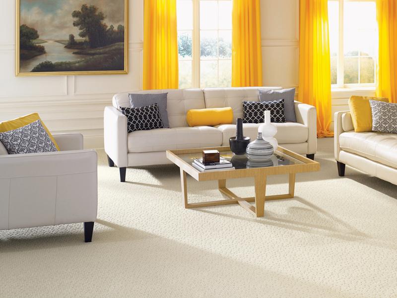 White Clean Carpet in Modern Living Room