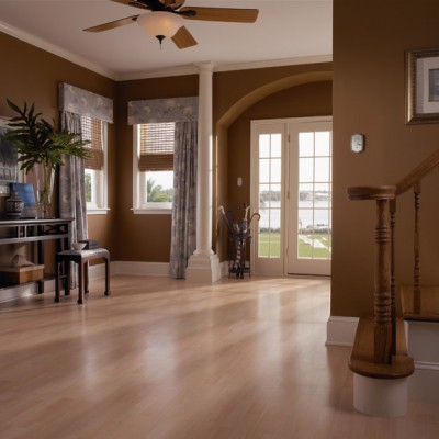 Tan Laminate Flooring in Home's Entryway
