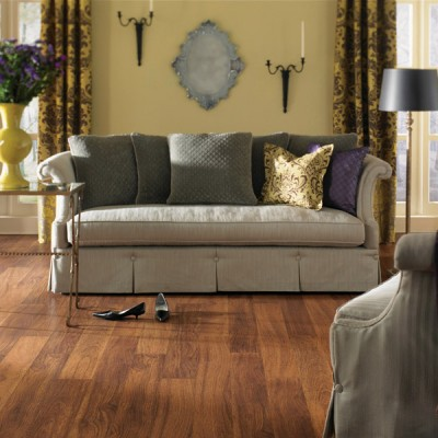 Wood Textured Laminate Floors in Traditional Living Room