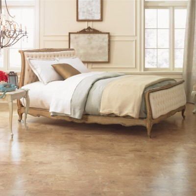 Tan Laminate Floors in Open Bedroom