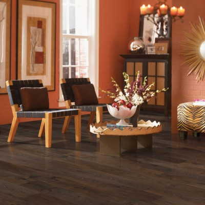 Contemporary Home with Dark Laminate Flooring