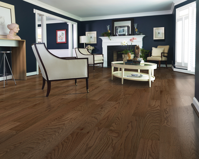 Contemporary Living Room with Hardwood Floors and Dark Blue Walls